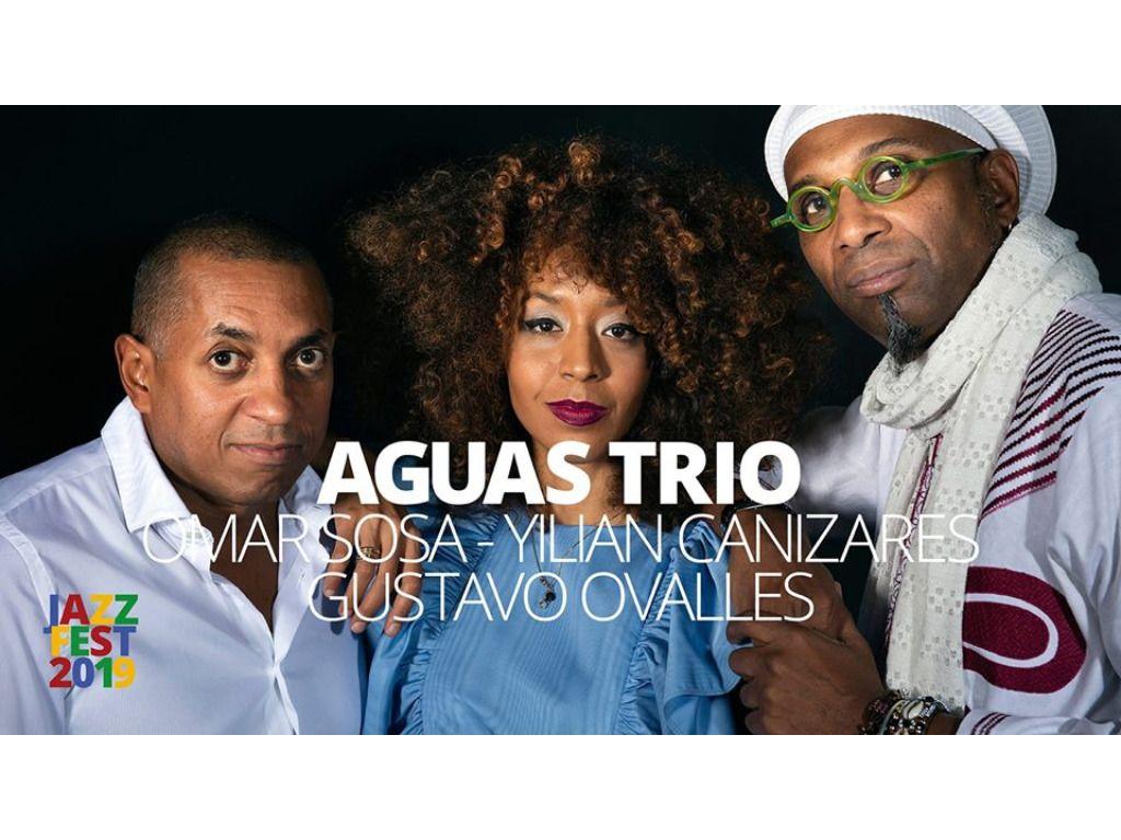 Aguas Trio