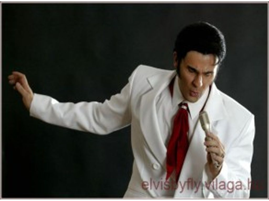 Elvis by Fly