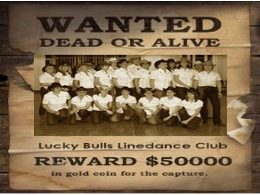 Lucky Bulls