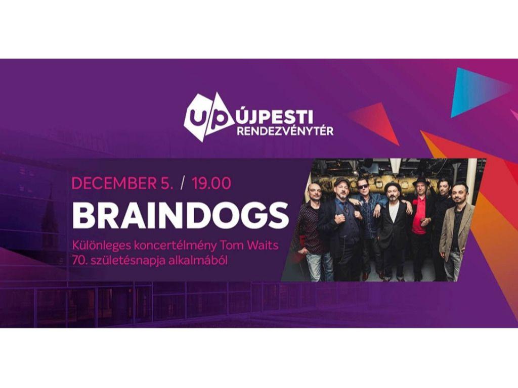 Braindogs koncert