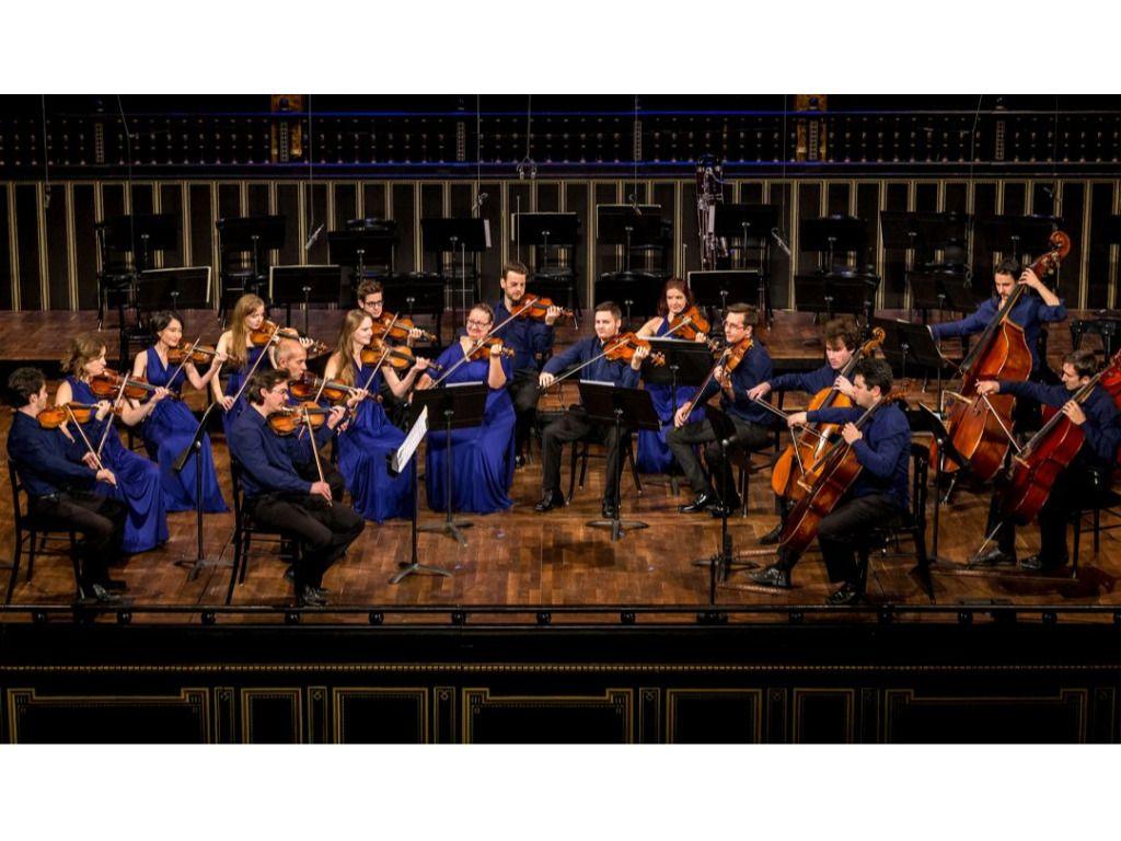 BQW 3/5 Quartetto Speranza, Anima Musicae
