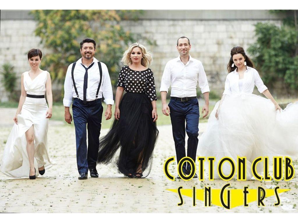 NEGYEDSZÁZ! - A Cotton...