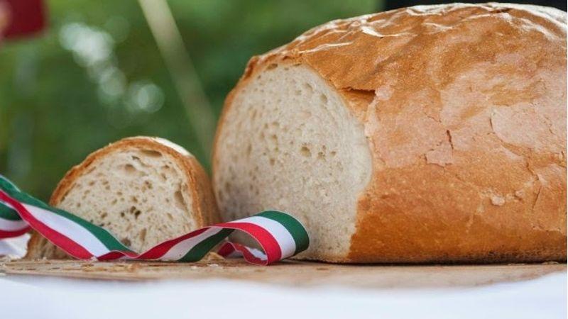 Sercli Feszt a Kobuciban az új kenyér ünnepén