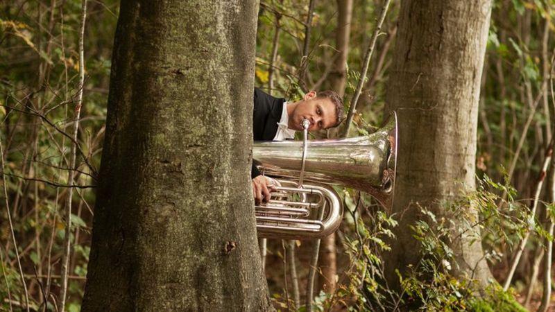 Nem mesél: muzsikál az erdő a Körösök völgyében