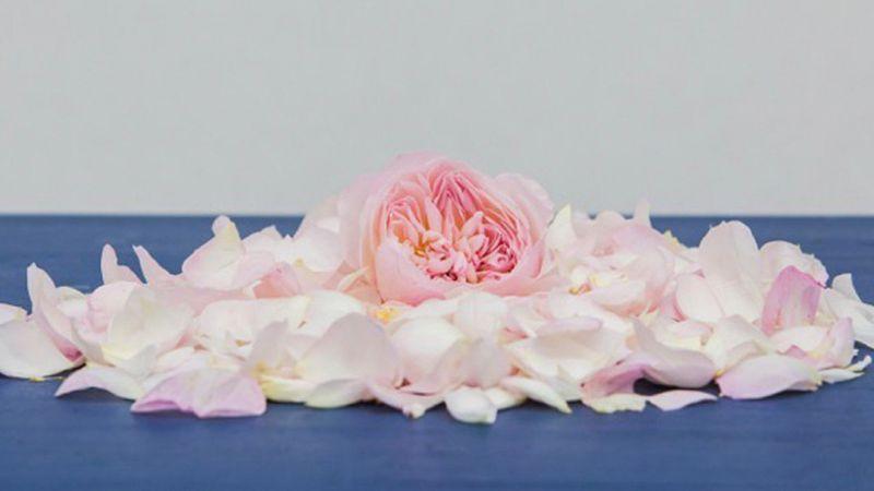 A rózsák kertjébe visznek el a perzsa szerelmes dalok