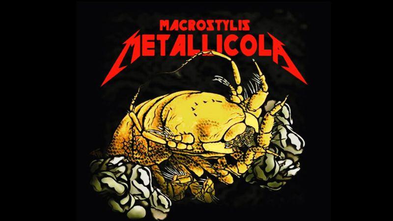 Fémfaló mélytengeri rákot neveztek el a Metallica-ról