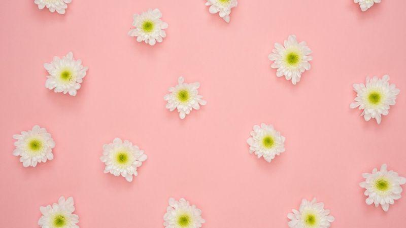 Virágboltosnak jobb lenni, mint zeneipari dolgozónak?