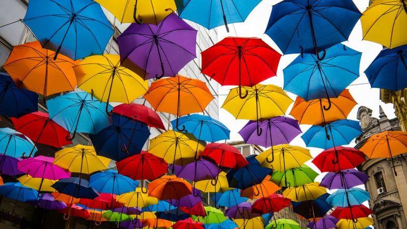 Esőmentes nyári estékre: zene és tánc a Benczúr kertben