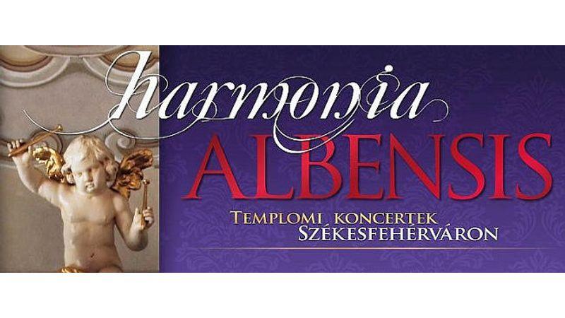 Da Vinci hangszere is megszólal a székesfehérvári templomi koncertsorozaton