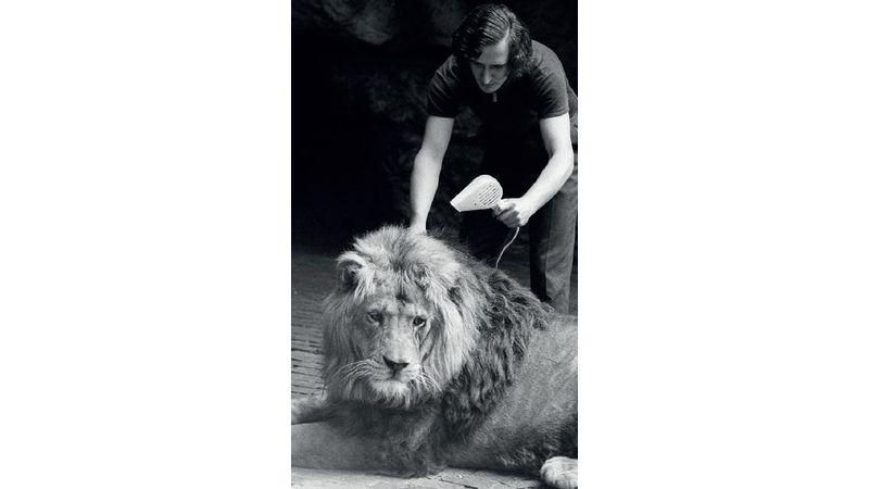 Az oroszlánketrecből a Műcsarnokba: zenés tárlatvezetés
