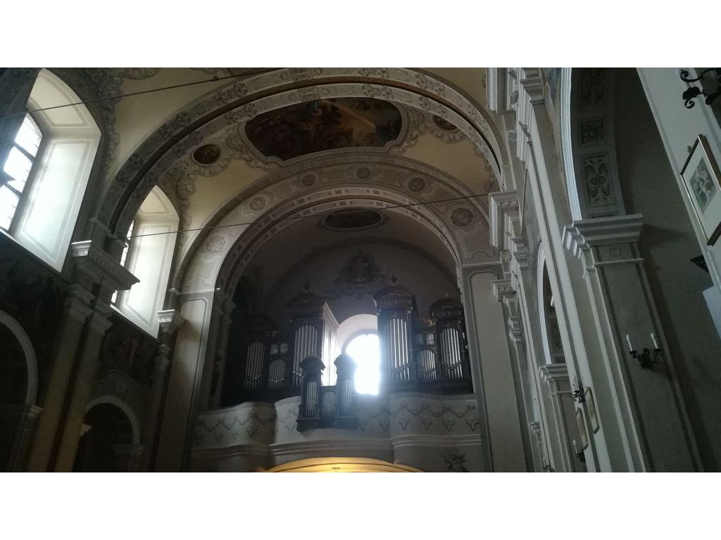 Pécs - Lyceum, Pálosok Temploma