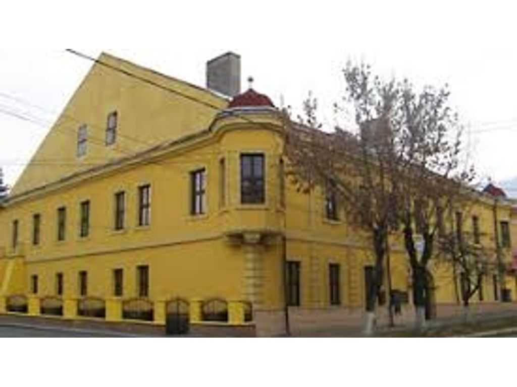 Máramarossziget, Zeneiskola