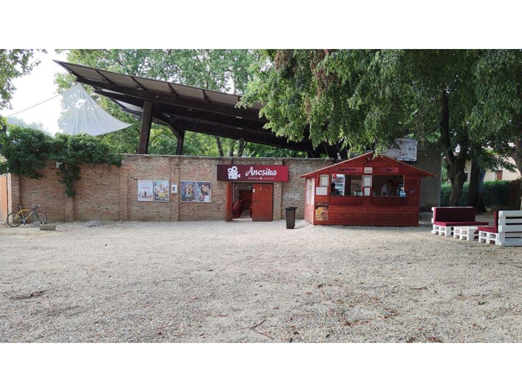 Ancsika Kertmozi és Kultkert