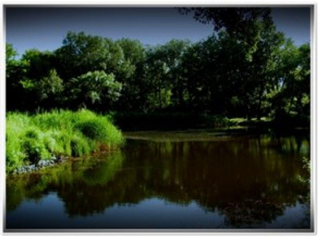 Göd, Feneketlen - tó, Bartók B. utca
