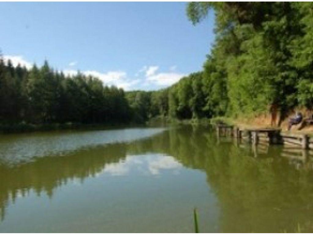 Szabadtéri színpad, Deseda tó