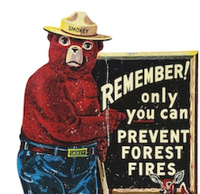 Smokey Bear inspires enduring line of collectibles