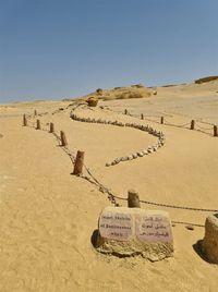 El Valle de las Ballenas, un tesoro de fósiles en el desierto de Egipto