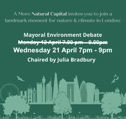 The next mayor should create a 'more natural capital'