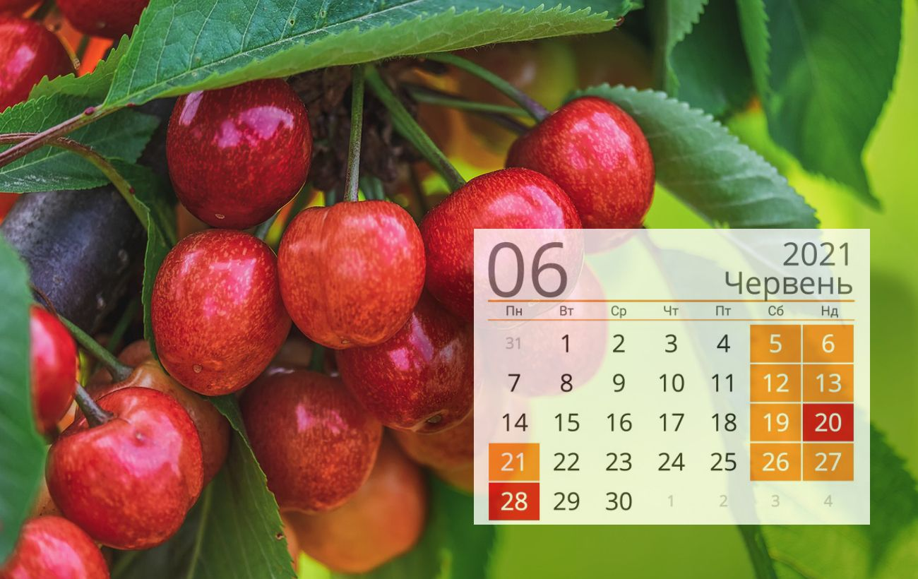 Свята та вихідні в червні 2021: з'явився календар важливих дат