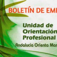 BOLETIN DE OFERTAS DE EMPLEO A FECHA 13 DE ABRIL DE 2021