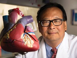 Zhang and team publish editorial on cardiovascular sciences