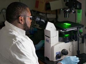 BME to offer a new undergraduate course in Clinical Innovation