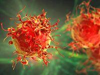 Dudeja lab reviews microbiome and anti-tumor machinery interaction