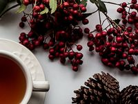 5 mindful tips to de-stress this holiday season