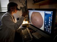 Research to Prevent Blindness continues its support of ophthalmology research at UAB