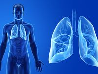 Birmingham-based UAB spinoff will develop treatments for cardio-pulmonary diseases
