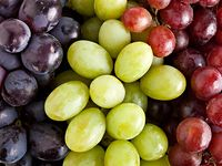 Grapes could protect against sun damage, say UAB dermatologists