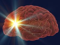 Stroke patients with COVID-19 have increased inflammation, stroke severity and death
