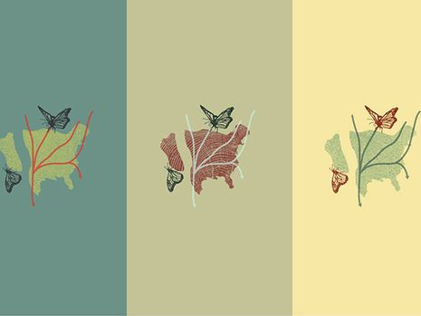 Monarch butterfly-inspired art on show at UAB Solar House