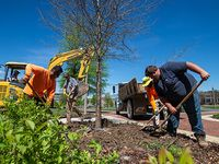 New growth: UAB's Tree Campus honors expand to medical center
