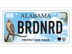 Alabama Audubon announces UAB BLOOM Studio-designed state auto tag