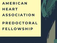SOPH epidemiology students among 2020 AHA Predoctoral Fellowship awardees