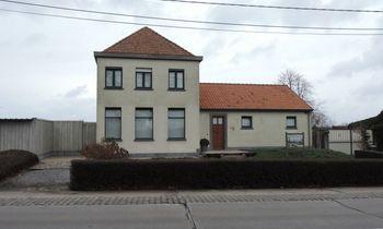 Ieper - Huis / Maison - Wisteria