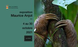 Maurice Anjot