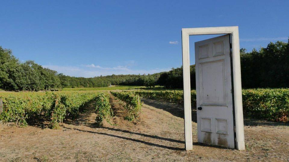Visite d'un domaine viticole du Var