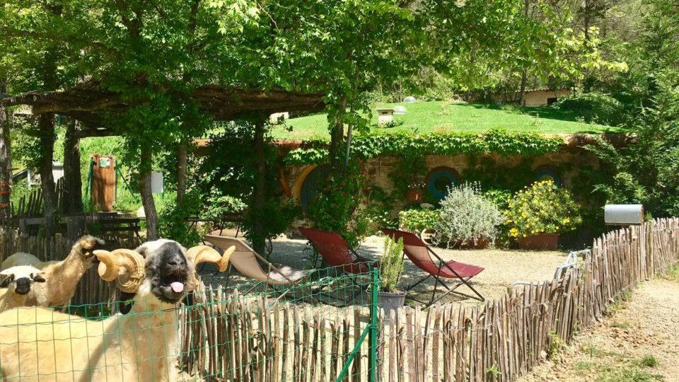 Hébergement et parc insolite à Flayosc