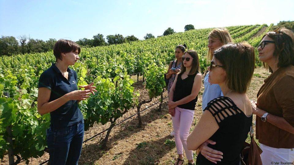 Visite guideée au vignoble de Roquebrune sur Argens