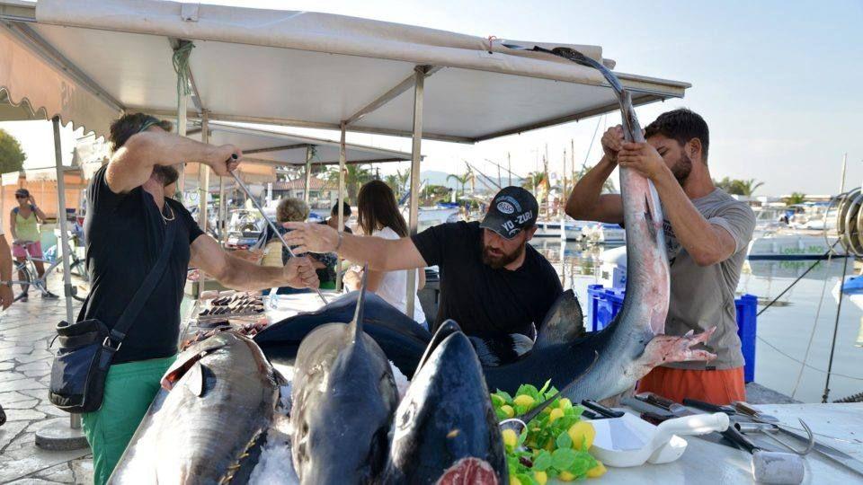 Pêcheurs sur le port de Sanary