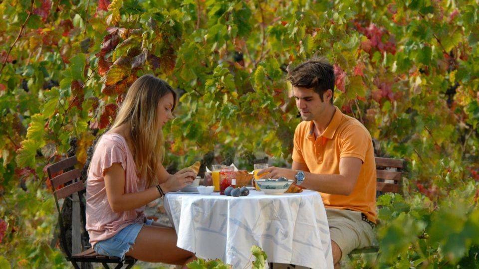Petit déjeuner champêtre dans le vignoble de Bandol