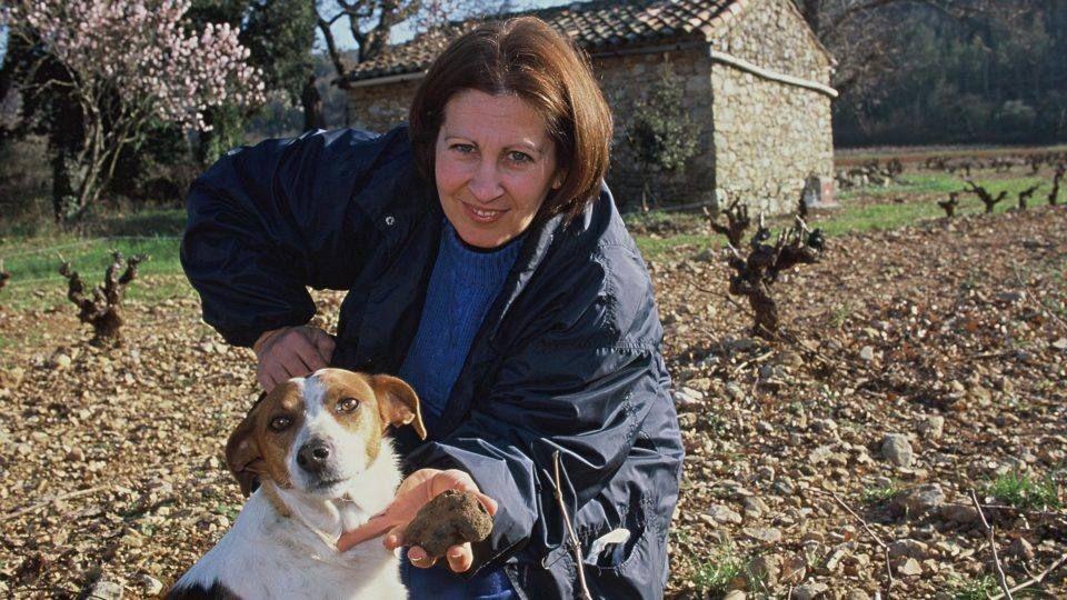 A la recherche de la truffe dans le Haut Var Verdon
