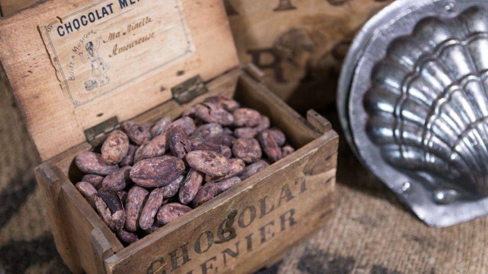Maison du chocolat à Roquebrune-sur-Argens
