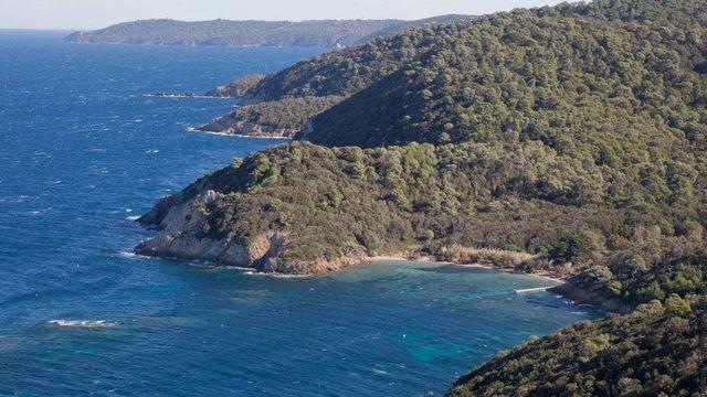 L'île de Port-Cros