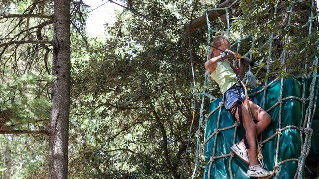 Balade dans les arbres