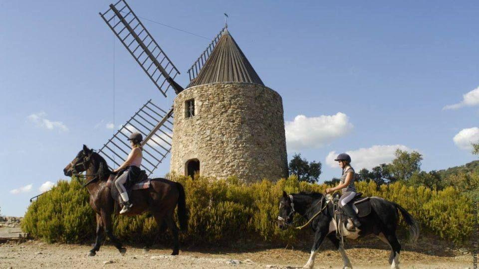 Balade equestre dans le massif des Maures