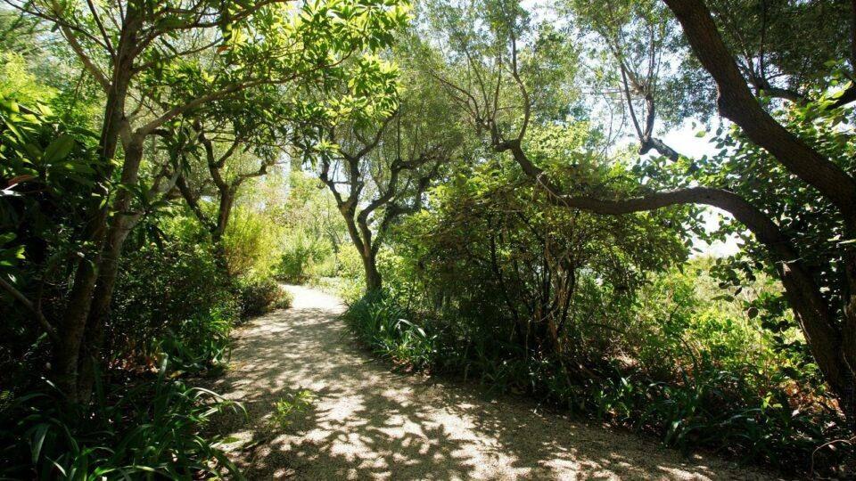Parc Saint Bernard