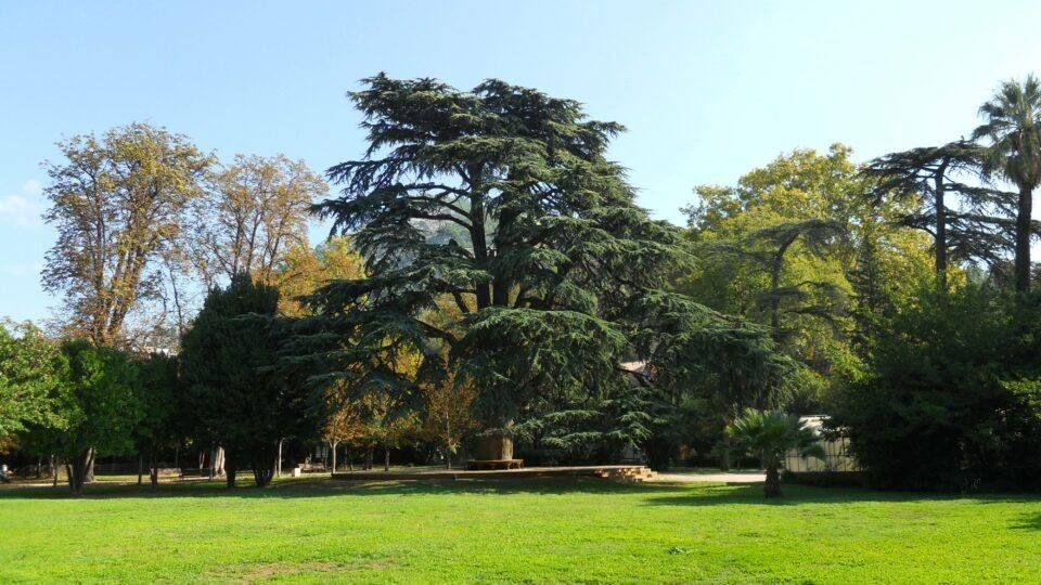 Jardin du Las